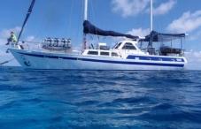 best diving sites in great barrier reef australia scuba dive