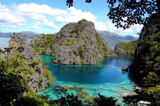 Best Diving Sites In Coron Palawan Philippines Scuba Dive