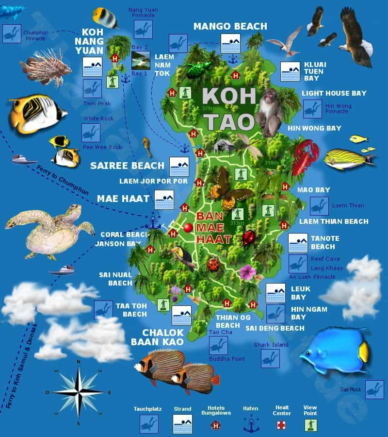 Shark Bay Koh Tao Map Koh Tao Map