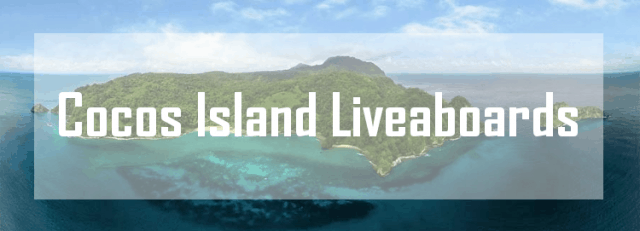 cocos island liveaboard diving cruise