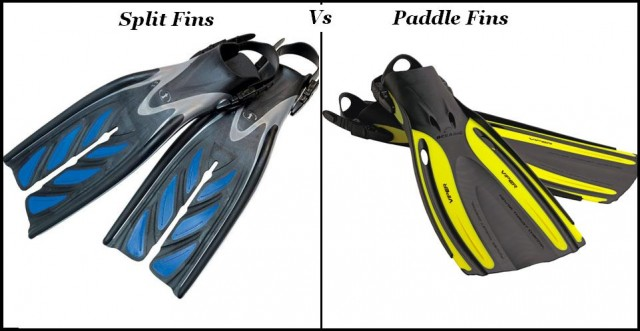 The difference between Split Fins and Paddle Fins?  Split Fins literally have a split and have been divided into two parts.