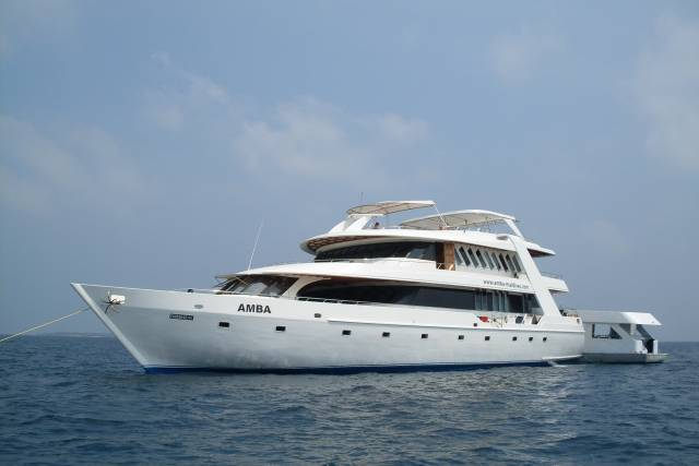mv-amba-liveaboard-maldives-reviews