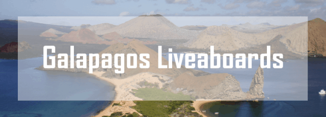 best galapagos liveaboard