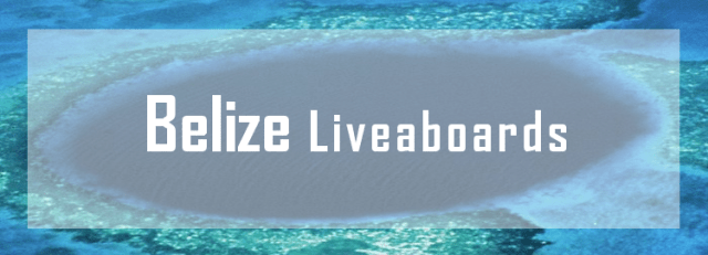 best belize liveaboard