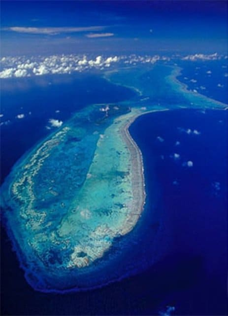 The Lighthouse Reef is the furthest atoll from mainland Belize but the most famous reef among the rest.