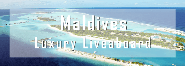 luxury liveaboard maldives