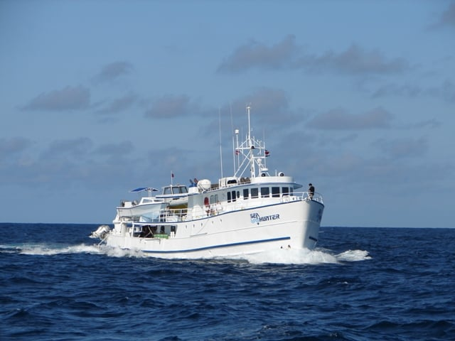 liveaboard reviews