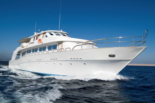 M/Y Dreams red sea egypt budget liveaboard