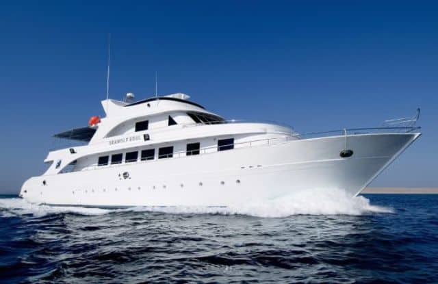 seawolf soul luxury red sea liveaboard