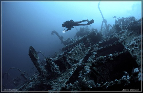 Although known more for its coral reefs, the Southern Red Sea is also home The Aida, which is one of the most beautiful wrecks in the Red Sea.
