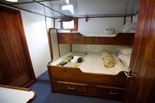 deluxe cabin on the fiji aggressor