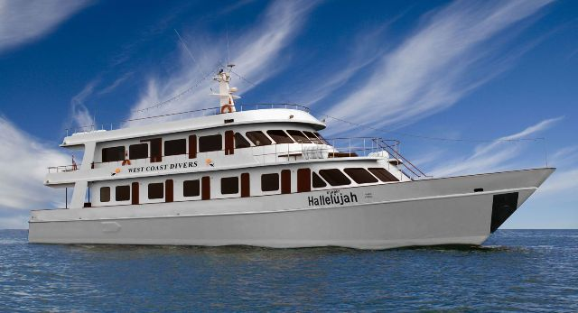MV Hallelujah budget liveaboard similan islands