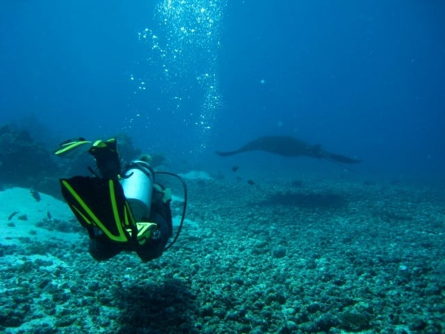 top diving spots in asia