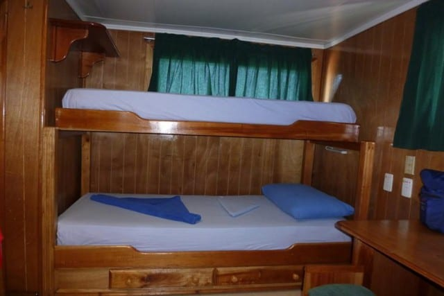 mv la reina twin bunk cabin liveaboard review