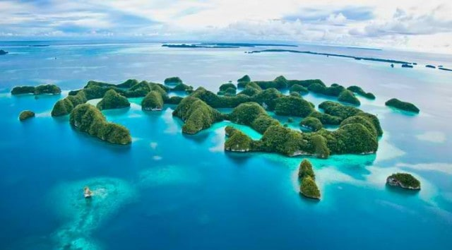 palau-liveaboard-reviews
