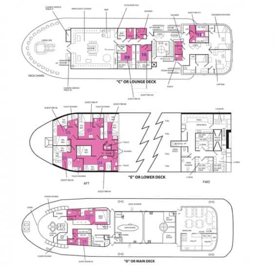 ss thorfinn deck plan liveaboard review