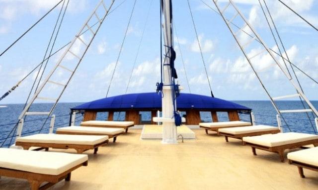 sy palau siren sun deck liveaboard review