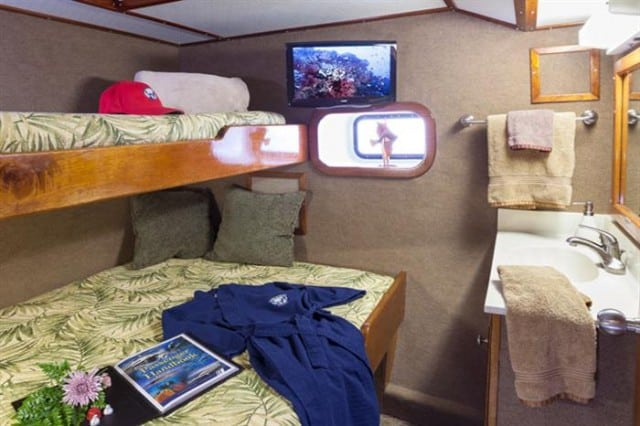 mv bahamas aggressor deluxe stateroom liveaboard review