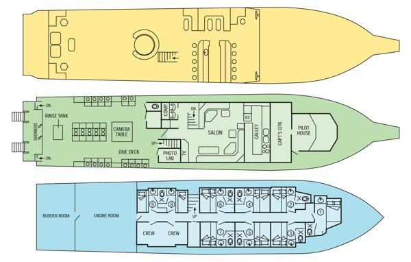 mv cayman aggressor iv floor plan liveaboard review