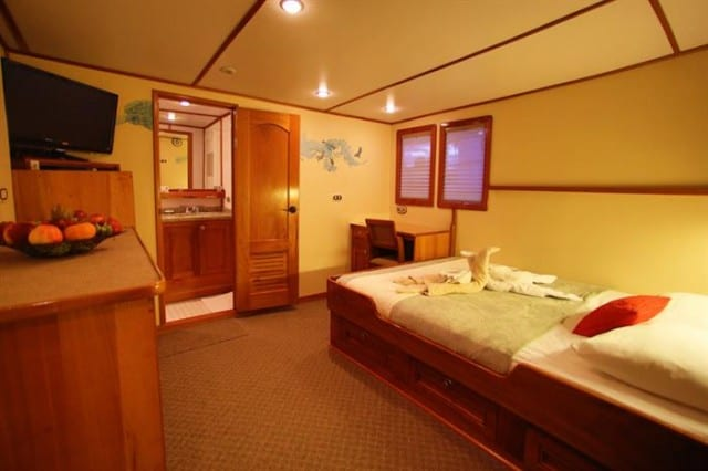mv sea hunter owners suite liveaboard review
