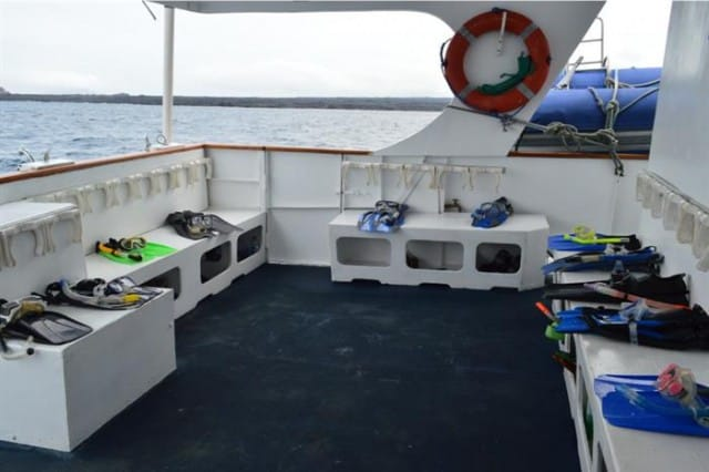 mv astrea dive deck liveaboard review