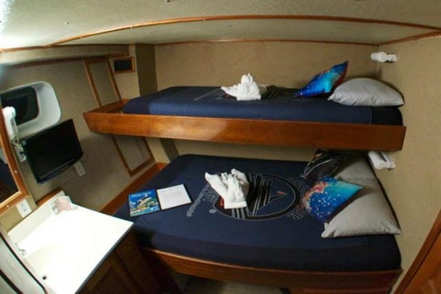 mv belize aggressor iii deluxe stateroom liveaboard review