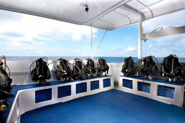 mv galapagos master dive deck liveaboard review