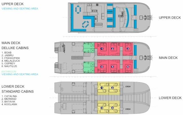 mv odyssey deck plan liveaboard review
