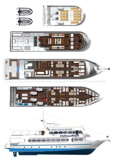 mv pawara deck plan liveaboard review