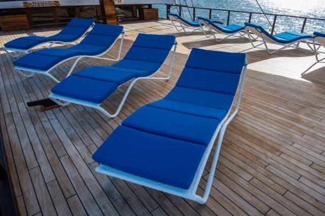 mv samambaia sun deck liveaboard review