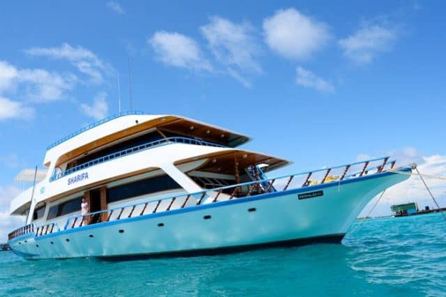mv sharifa exterior budget liveaboard maldives
