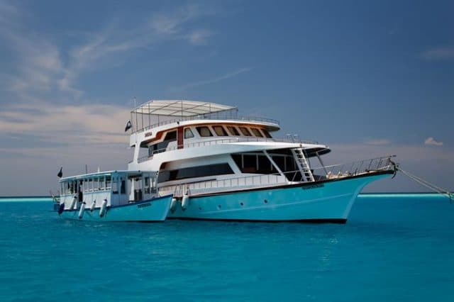 sheena budget liveaboard maldives