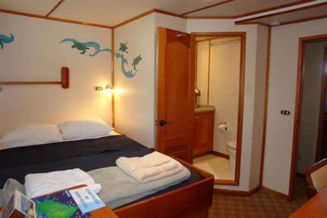 mv argo double cabin liveaboard review