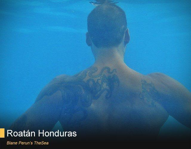 diving trip roatan blane perun honduras