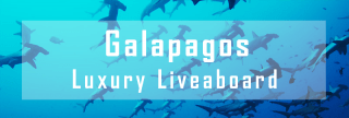 luxury liveaboard in the galapagos islands
