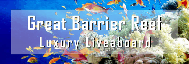 great barrier reed luxury liveaboard