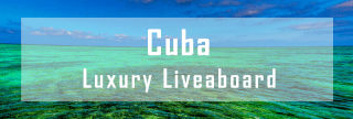 luxury liveaboard cuba diving cruise