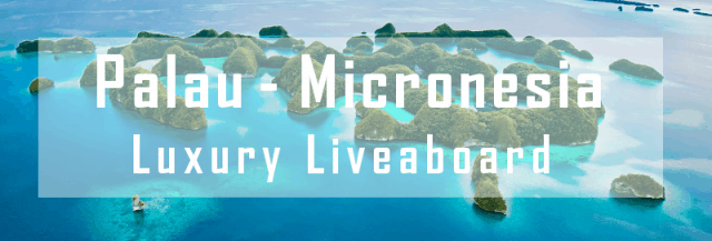 luxury liveaboard palau micronesia diving