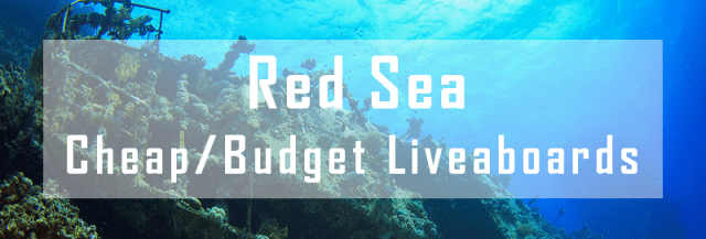 Budget Liveaboard Red Sea