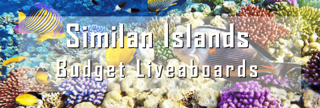 cheap budget liveaboard in the similan islands