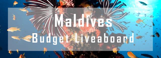 budget liveaboard maldives