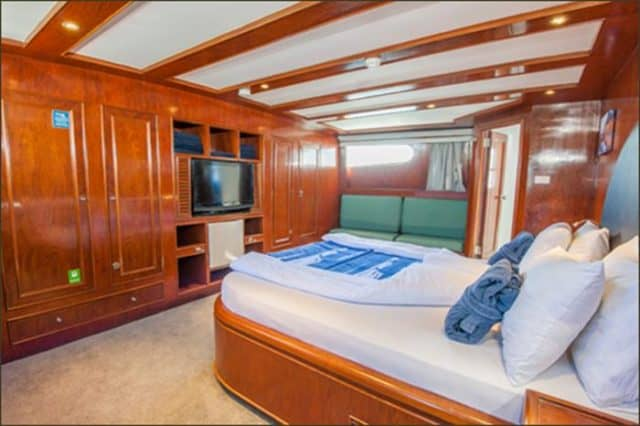 master my blue fin liveaboard red sea egypt