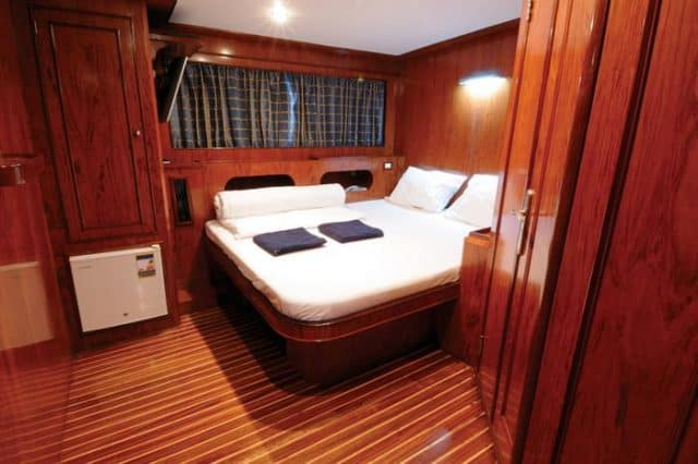 suite cabin blue horizon liveaboard red sea diving cruise