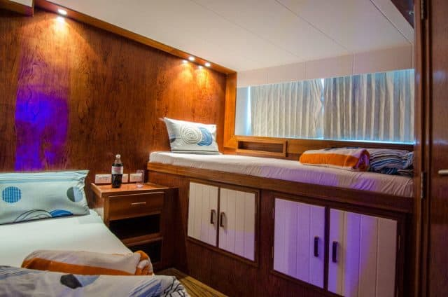 twin cabin on the blue planet 1 liveaboard