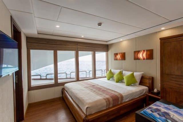 carpe novo luxury liveaboard maldives hammerhead cabin