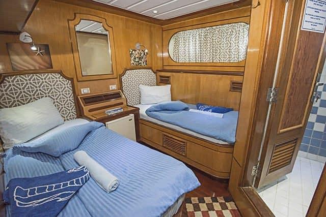 grand sea serpent liveaboard red sea cabin