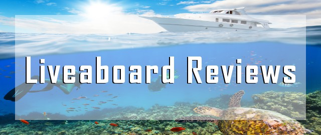 liveaboard reviews diving cruise destination