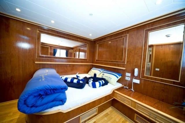 cabin snefro target liveaboard diving red sea