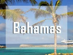 bahamas vignette liveaboard diving destination