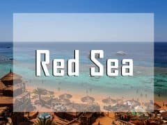 egypt red sea vignette liveaboard diving destination